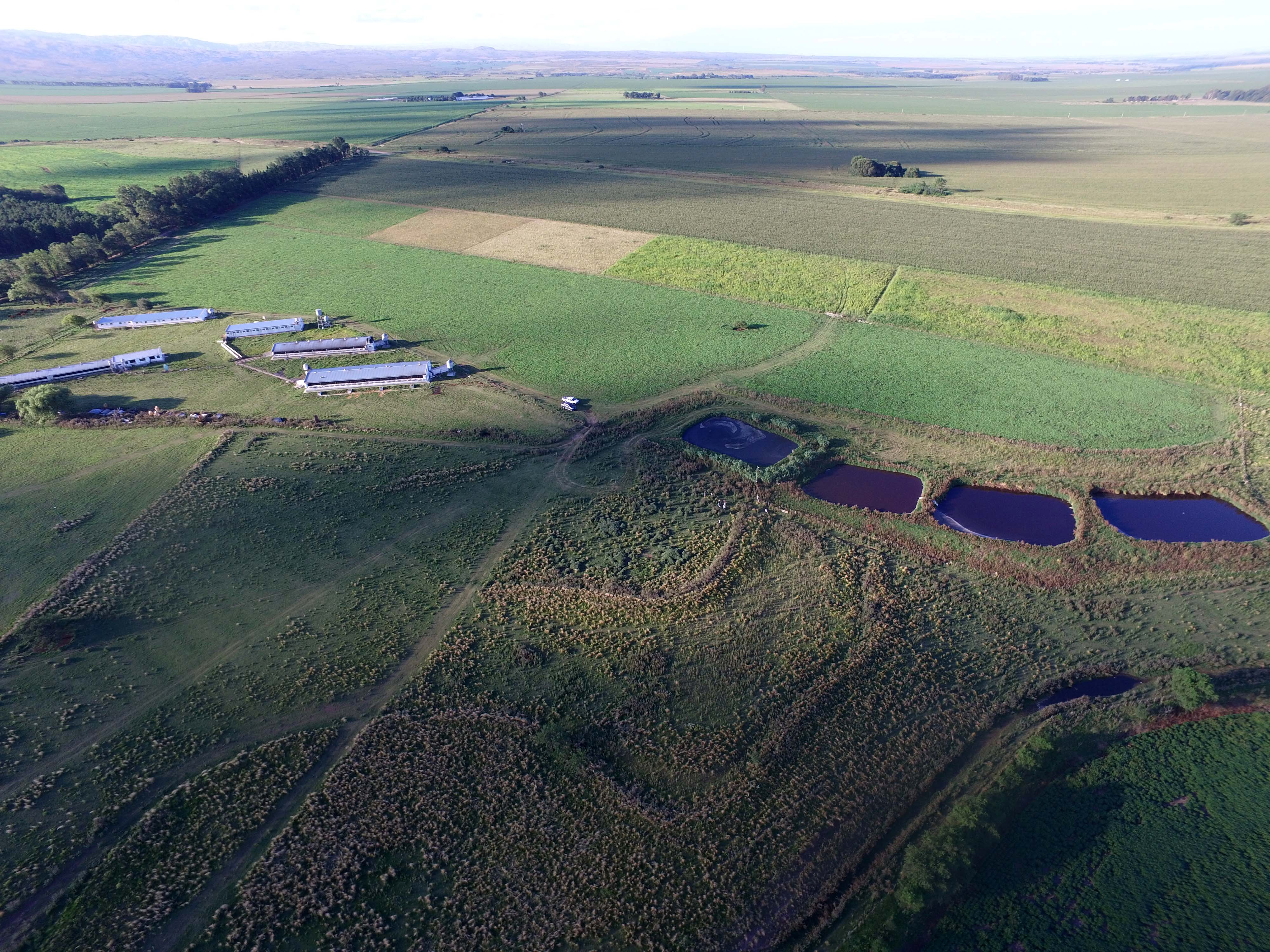 Construcción De Terrazas Para Prevenir La Erosión Hídrica